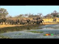Welcome to Botswana: Botswana